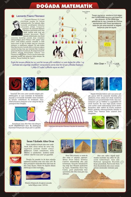 Doğada Matematik Okul Posteri