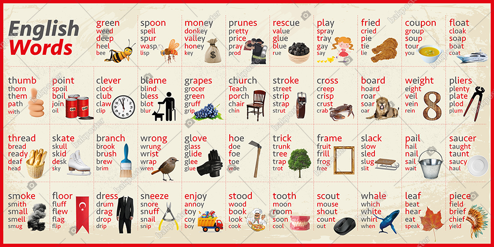English Words Okul Posteri İngilizce Görsel Okul Panosu